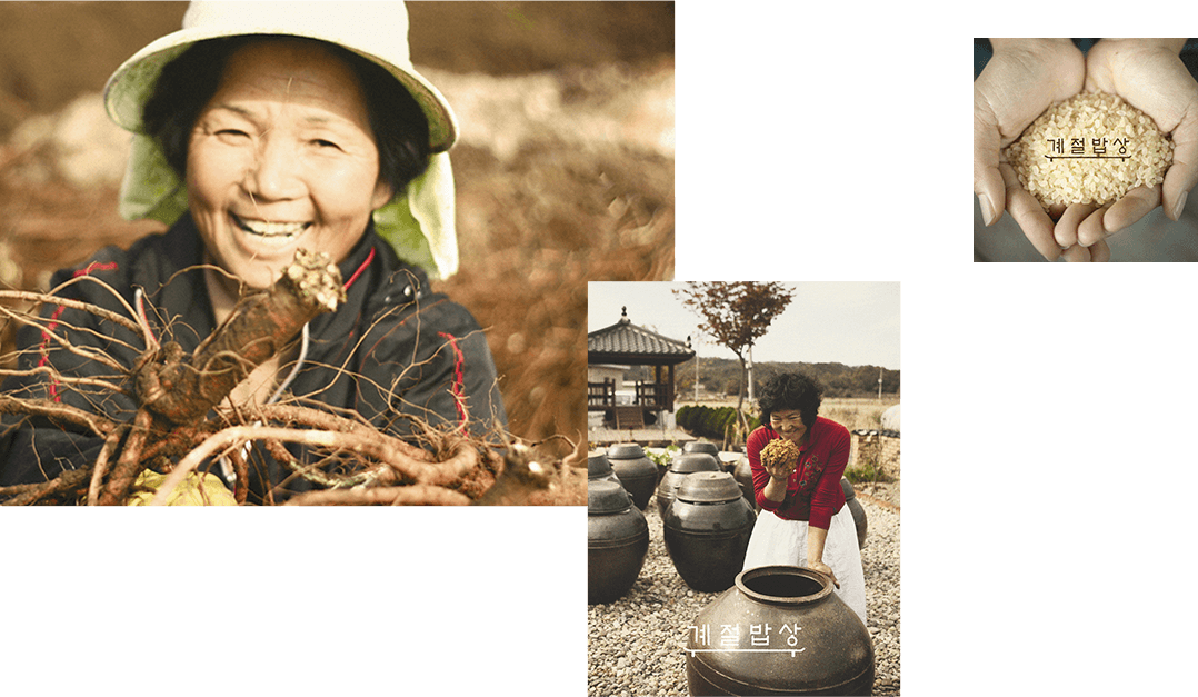 우리농가에 도움이 되는 안전한 농산물 사용, 지역별 잘 알려지지 않은 제철 식재료를 발굴하여 귀한 우리 제철 재료의 맥을 이어갑니다.